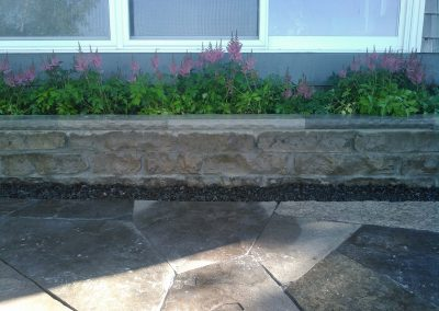 Flagstone patio and stone wall with Astilbe planted in the garden