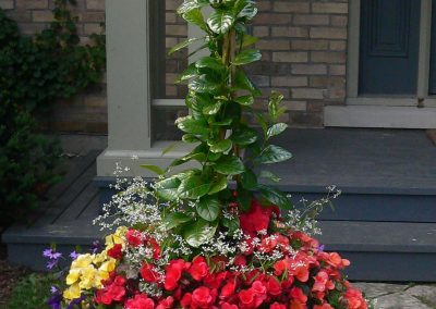 Summer container