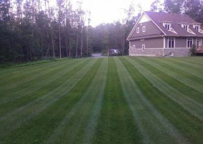 Grass cutting lines